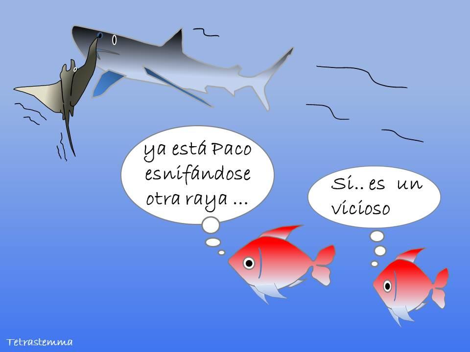 pez esnifando